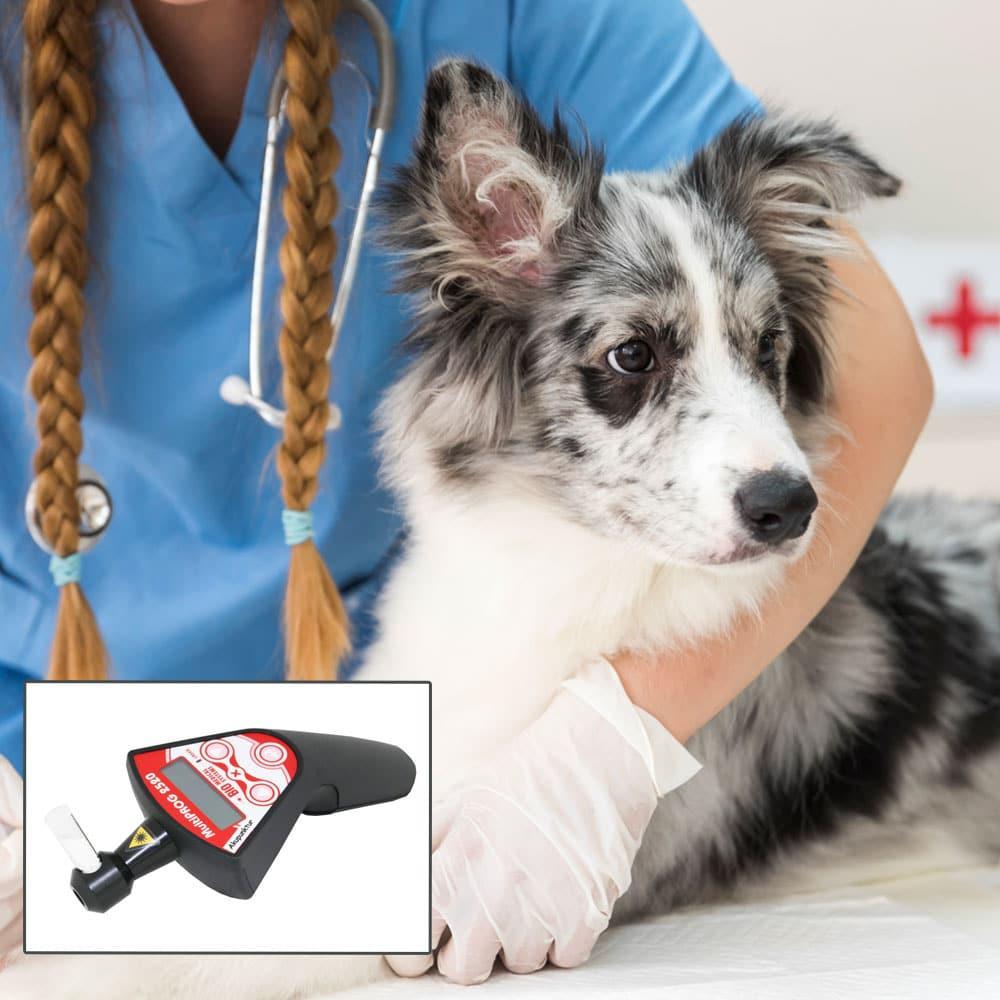 Impuls-Dioden-Therapielaser Multiprog MP 2520 Handylaser - Akupunktur und kleine Flächen