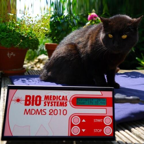 pulsierendes Magnetfeldtherapie System MDMS 2010 Kleintier