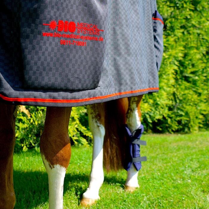 pulsierendes Magnetfeldtherapie System MDMS 2010 Pferd